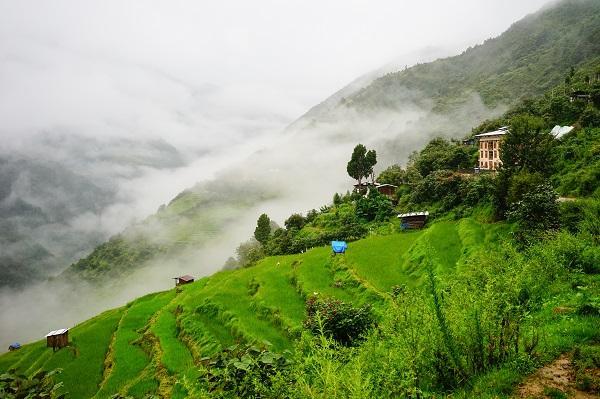 Les mesures écologiques engagées par le Bhoutan